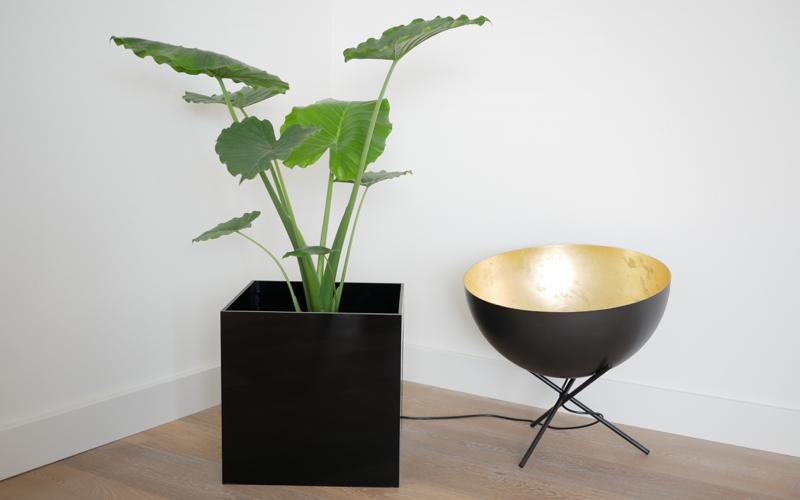 Plexiglas plantenbak