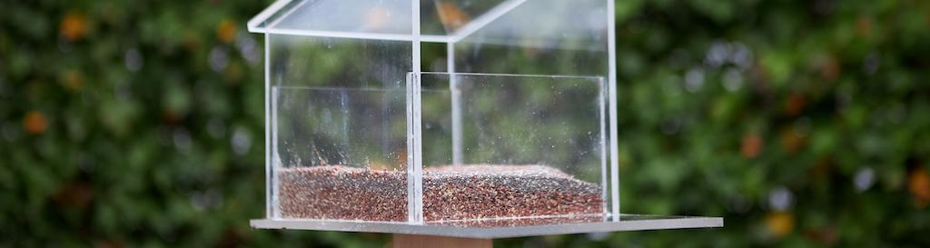 Vogelvoederhuisje maken van plexiglas