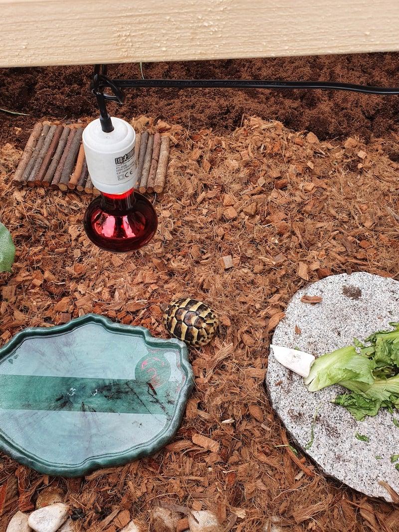 buitenverblijf schildpadden plexiglas