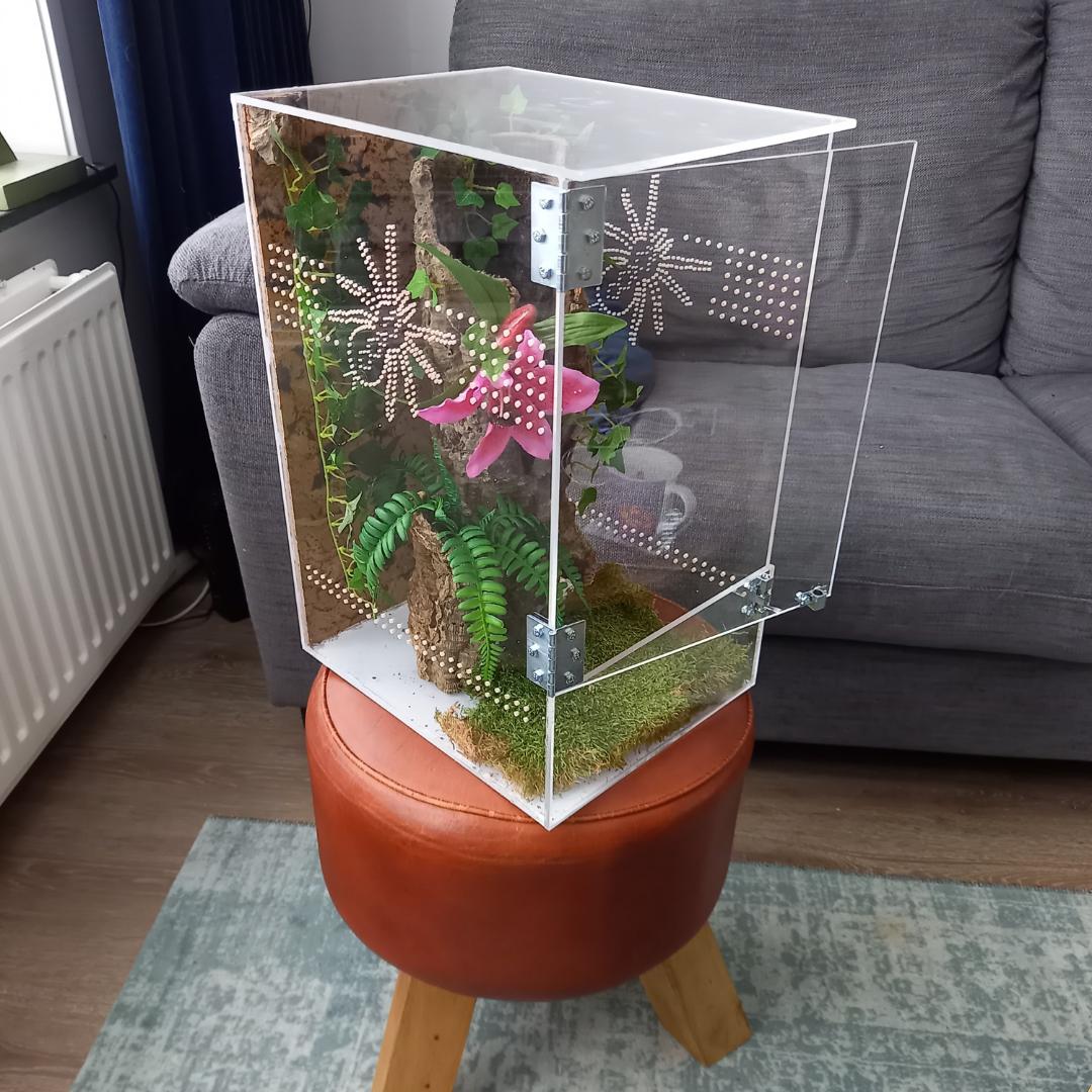Vogelspinnenverblijf van plexiglas